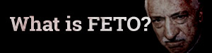 What is FETO?
